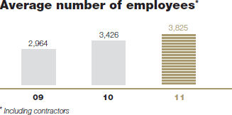 Average number of employees* [graph]